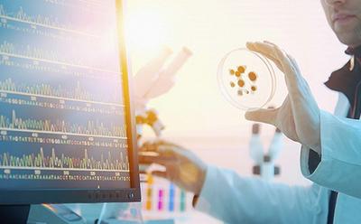 2017年中考生物复习指导:基因工程